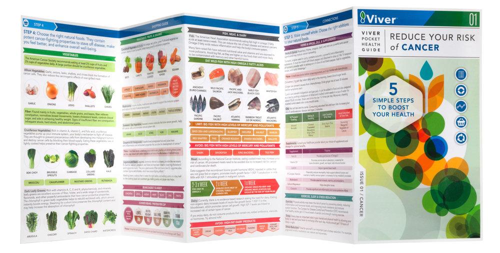 Viver-guide1.jpg