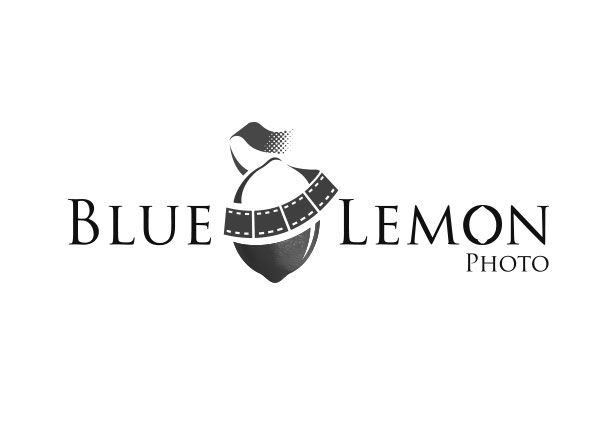 partner-blue-lemon.jpg