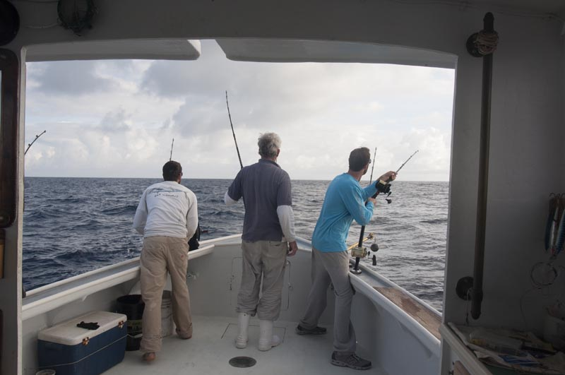©Fiander Foto_Early Bird Charters_Full Day Charter
