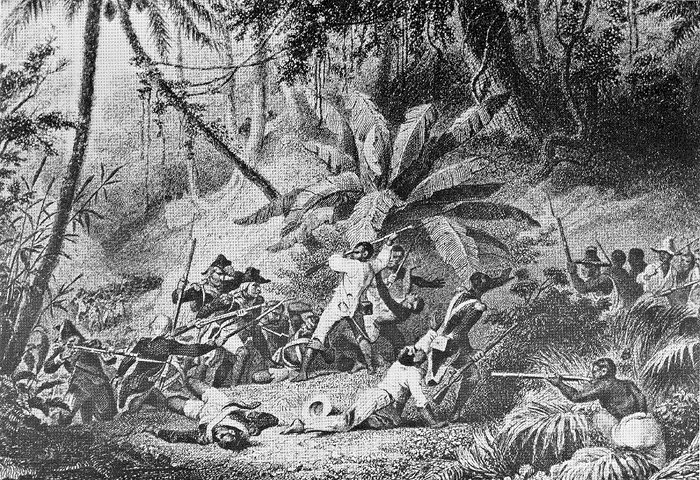 Leclerc's veterans storm Ravine-a-Couleuvre (Snake Gully) in 1802.