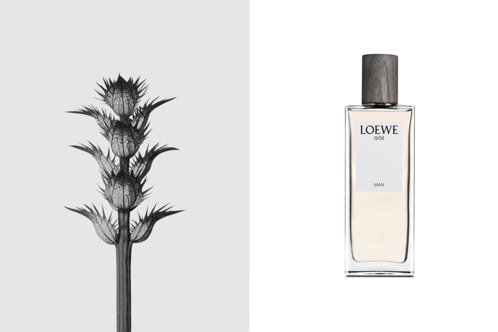 """The advertising campaign for LOEWE's """"001"""" Perfume."""