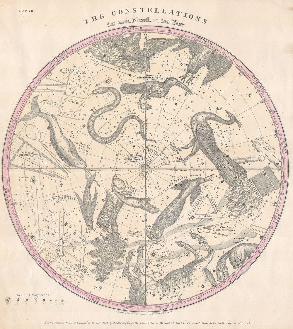 The Constellations for Each Month in the Year , engraved by W.G. Evans for the 1856 edition of Elijah Burritt's  Atlas Designed to Illustrate the Geography of the Heavens ., shows the stars of the Southern Hemisphere.