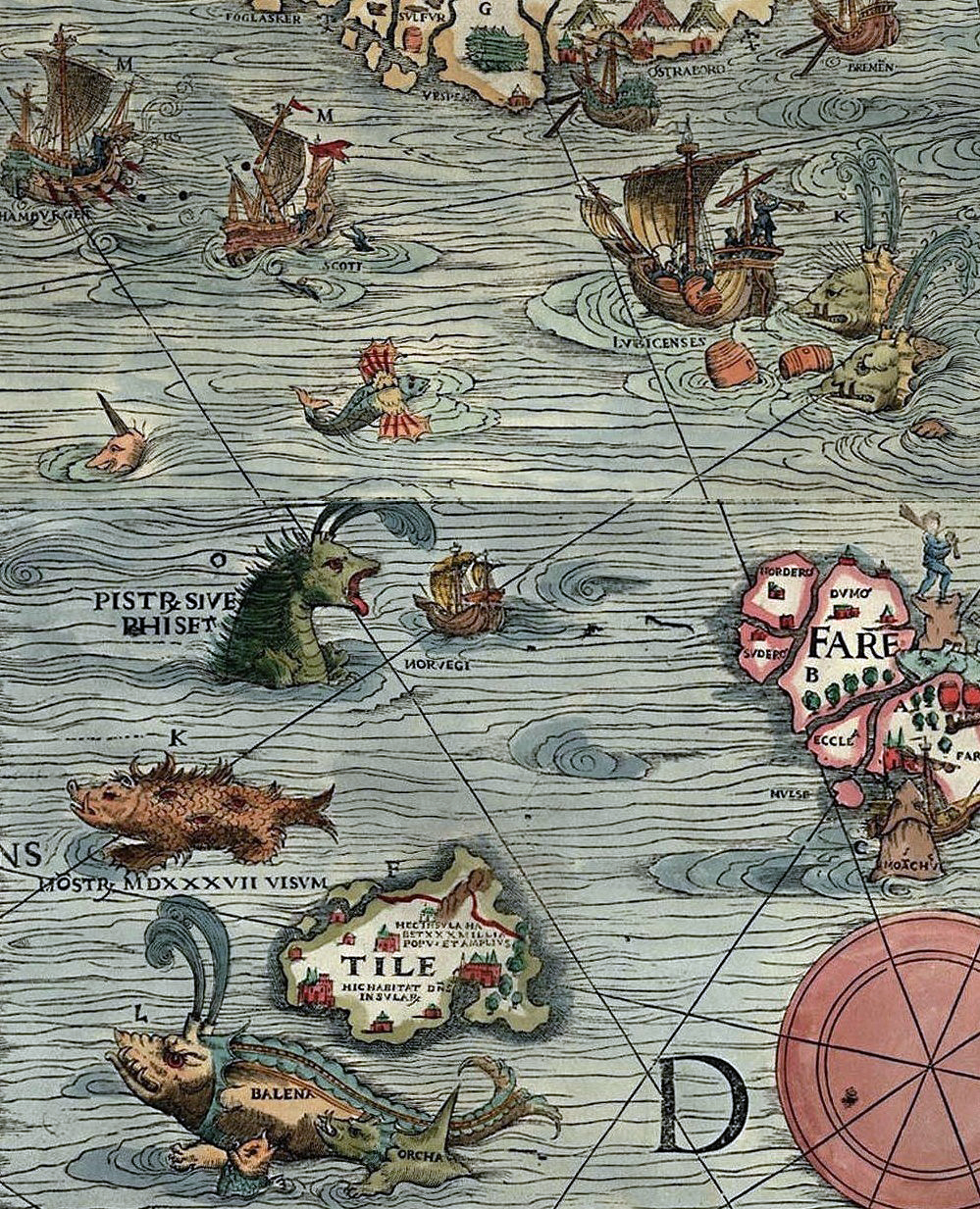 Detail of the Carta Marina map.
