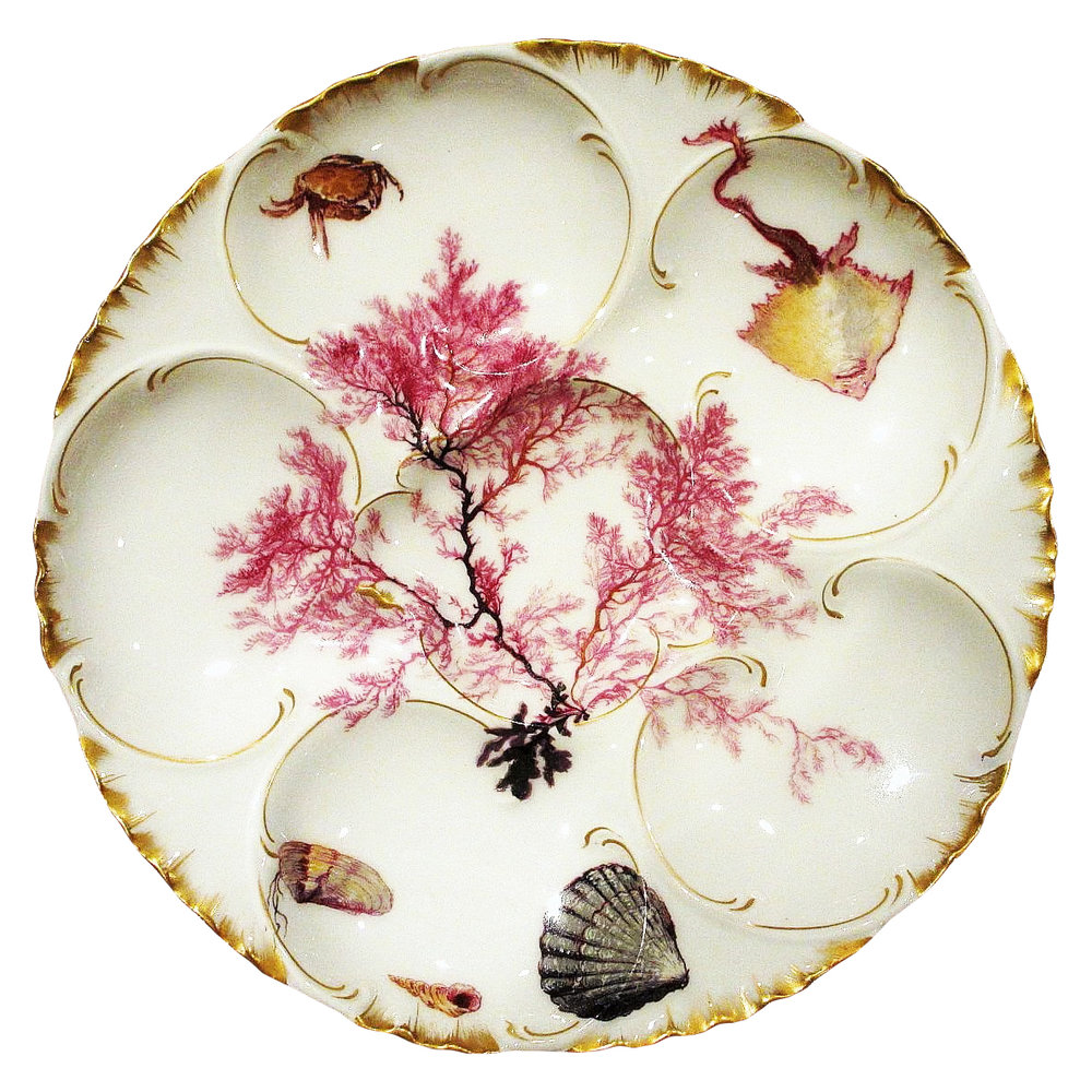 Haviland Limoges oyster plate from Ruby Lane.