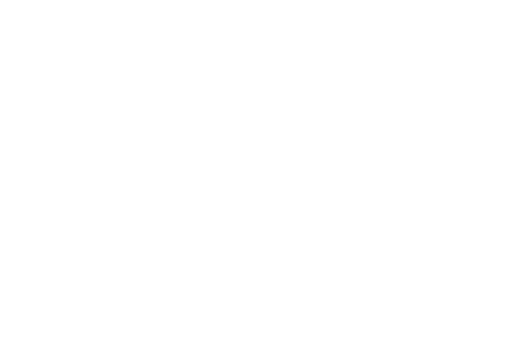 FINALIST - Shiver International Film Festival - 2017.png