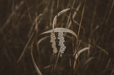 VERSO Jewelry - Artist Melanie Brauner You have all been impressed by her work. We have invited her for the second time. Come and meet her in person.