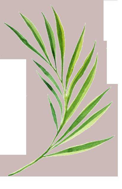leaf11.png