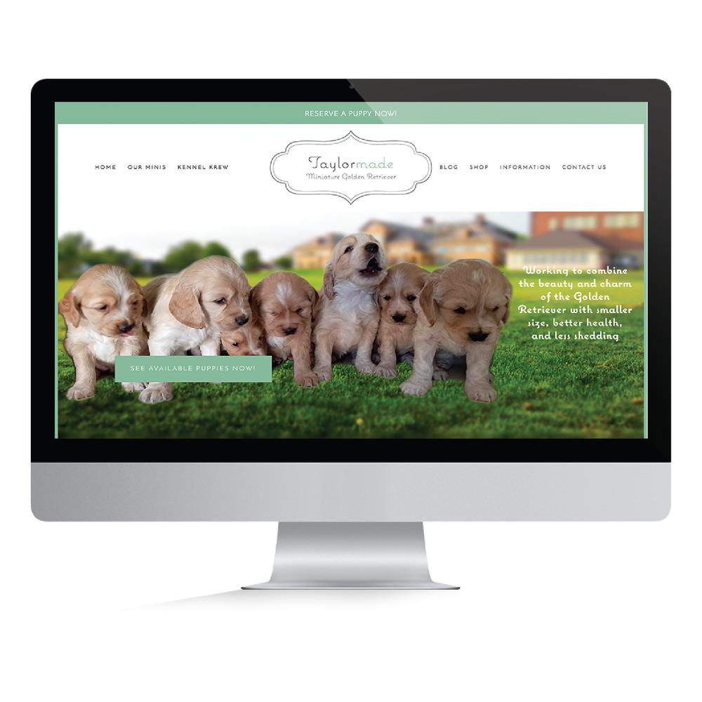 Blog — Casey Altman Design Inc