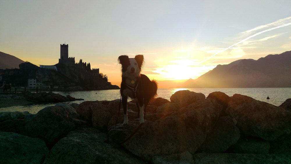 Garda sunset.jpg