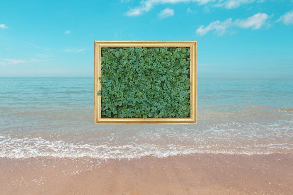water_frame_2.jpg