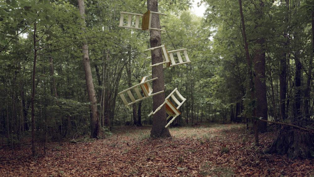 chairs-on-tree.jpg