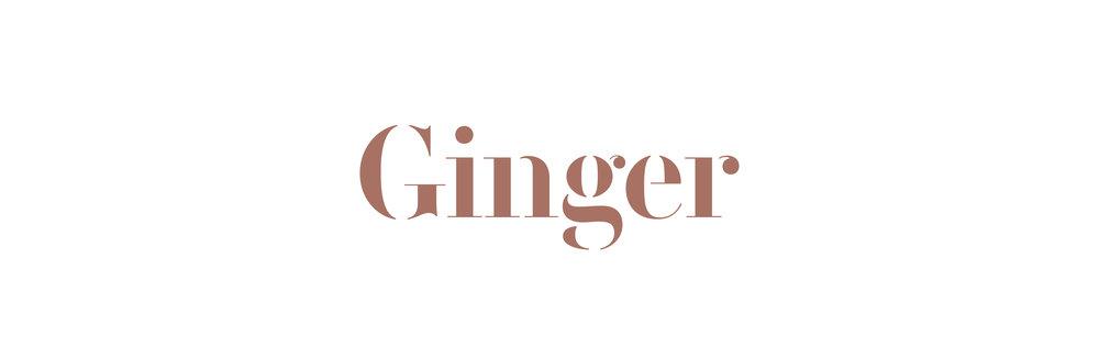 ginger-apresentacao-identidade-01-144-ln.jpg