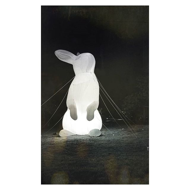 Anyone else ever wish they were a giant, light-up bunny? Asking for a friend... 🐰🐇
