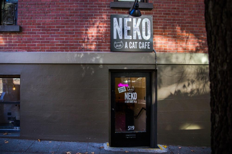 Neko Cat Cafe: Custom Business Sign