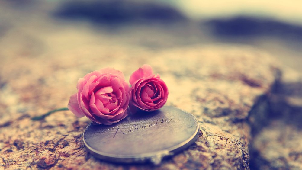 Love-Flowers-And-Coins-Wallpaper-HD