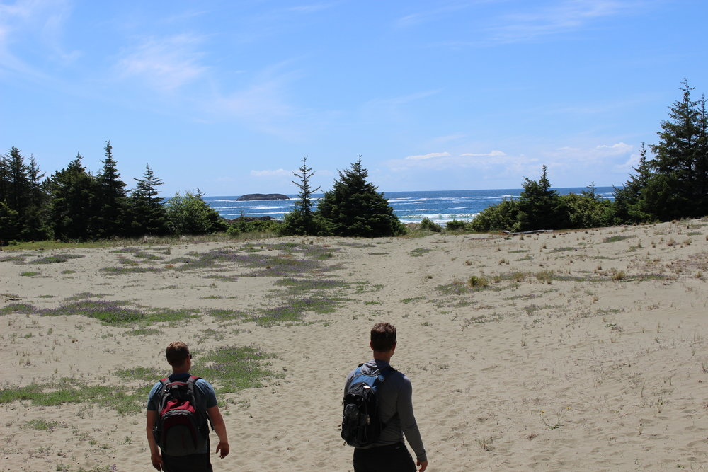 Coming out of the forest onto the gorgeous and secluded beach