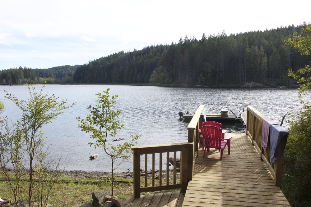 The view from Caitlin's cabin