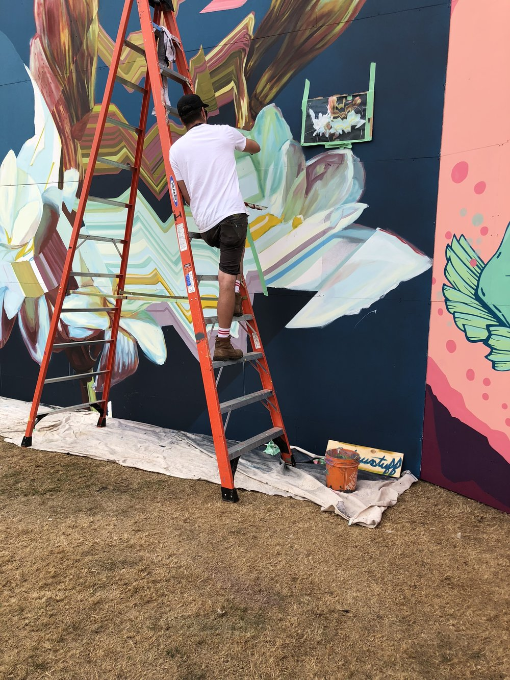 One of the murals being painted