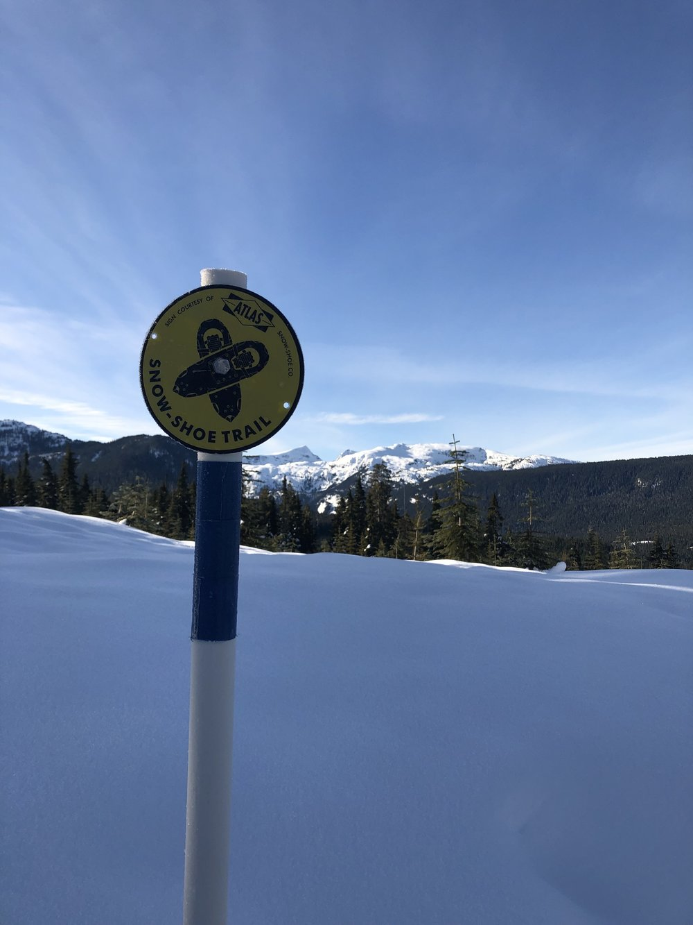 Trail markers leading the way