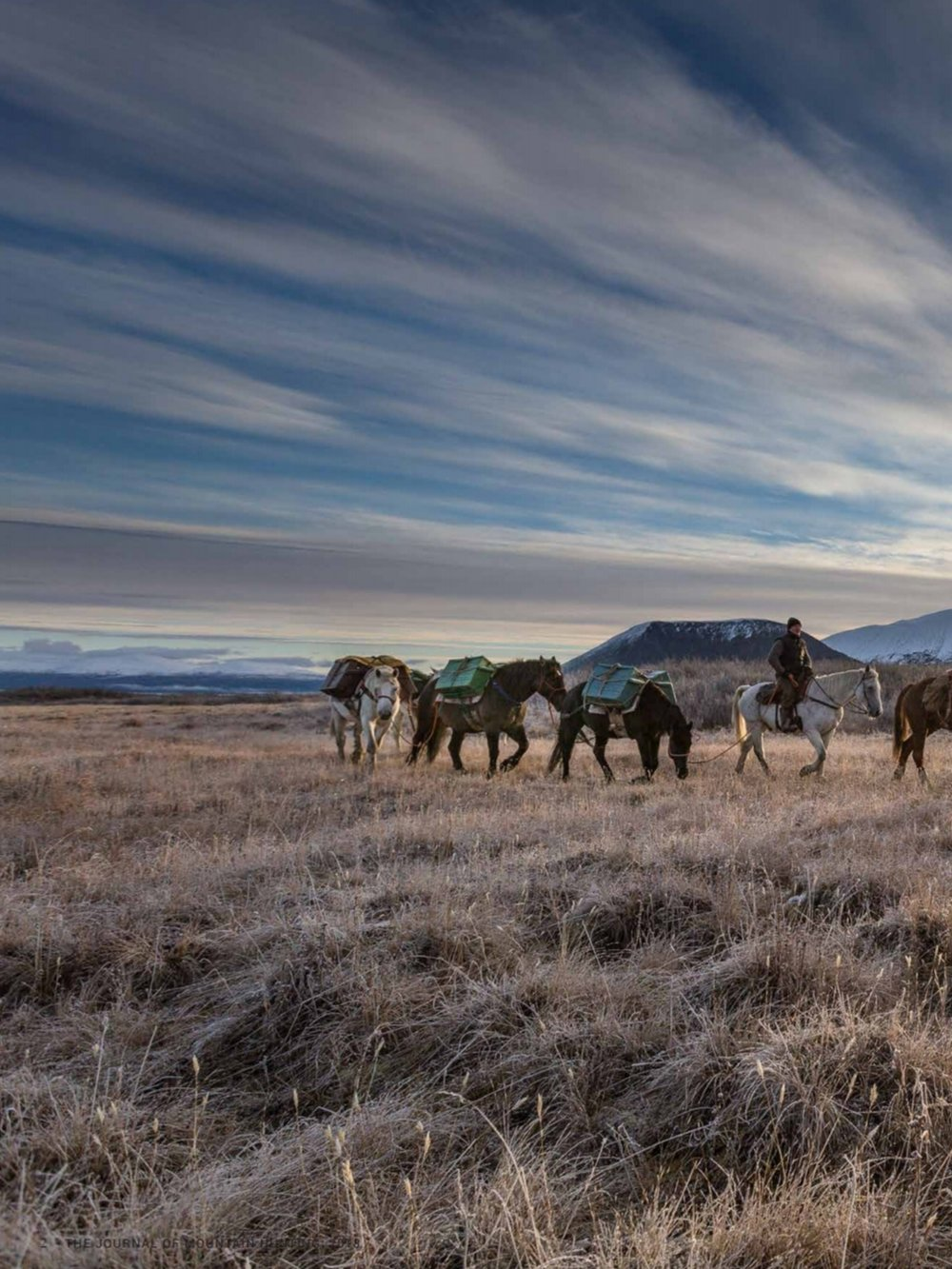Backcountry on horseback