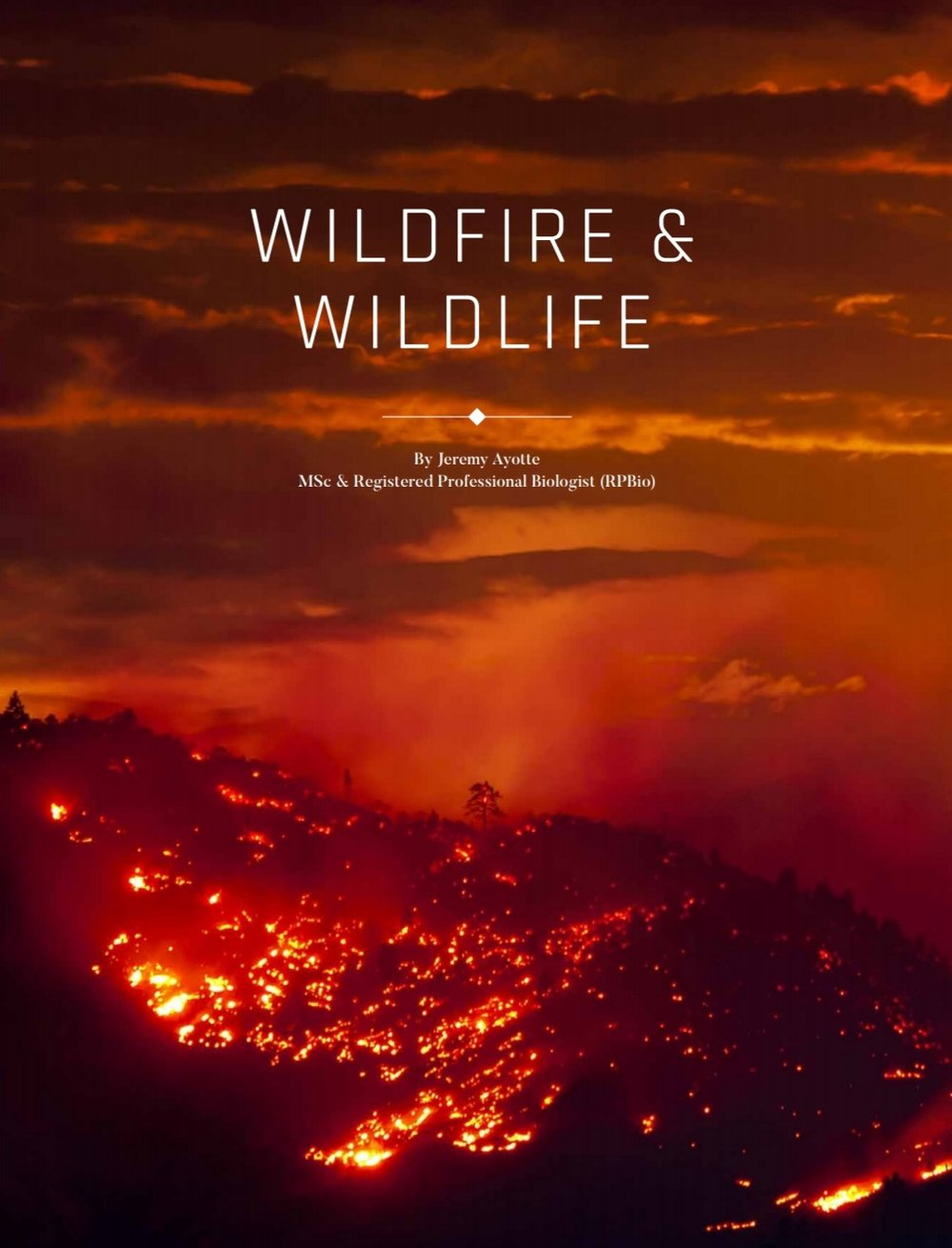 Wildfire article by Jeremy Ayotte from BC