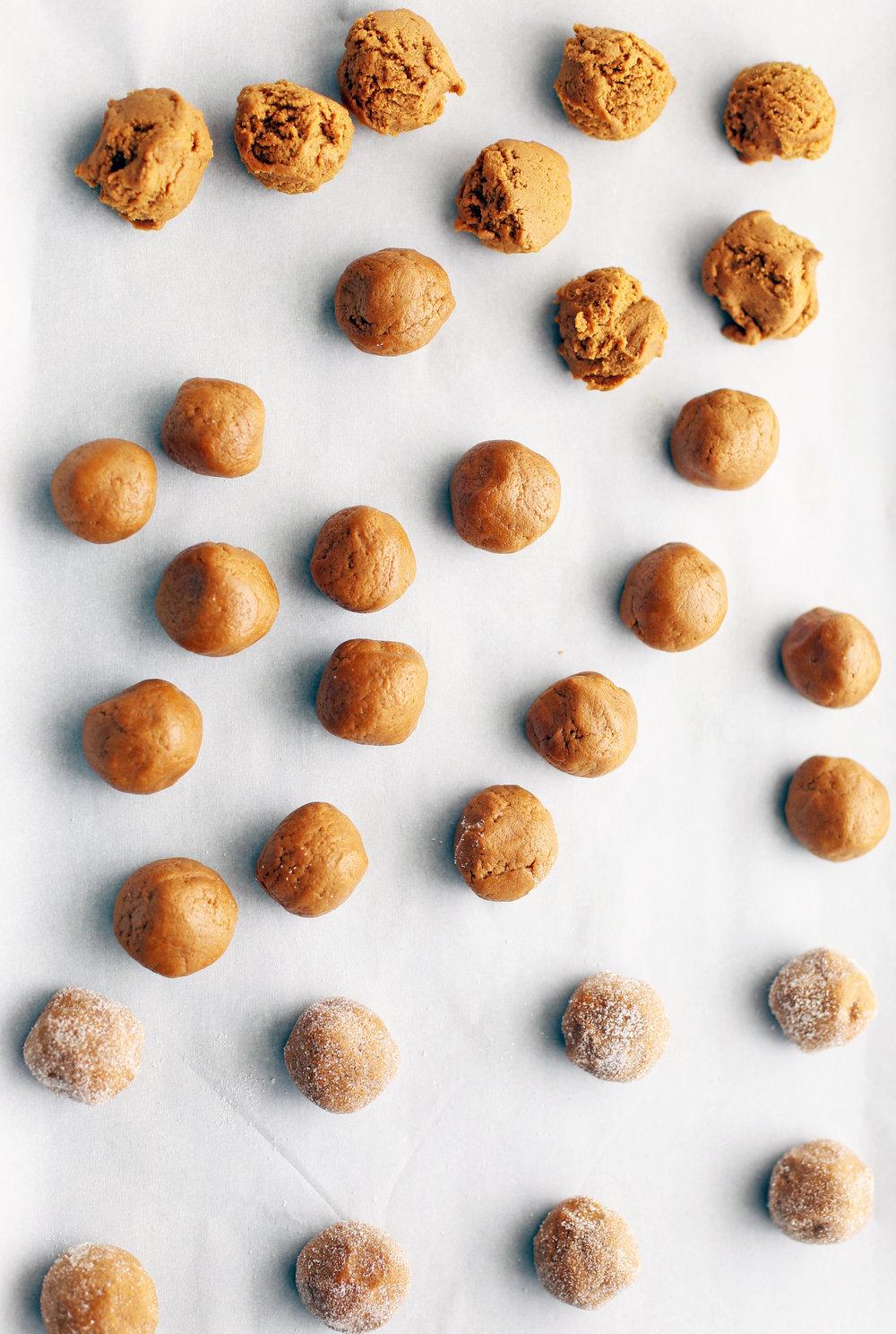 gingersnap_cookies_rolled(v).jpg