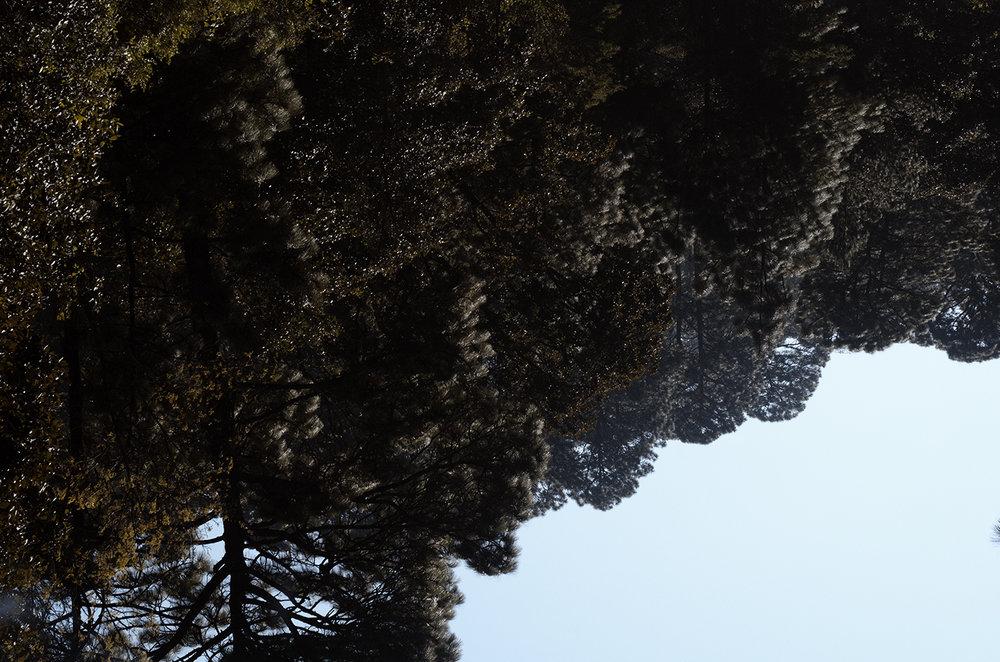 MontañaAzulCintiaDuran2.jpg