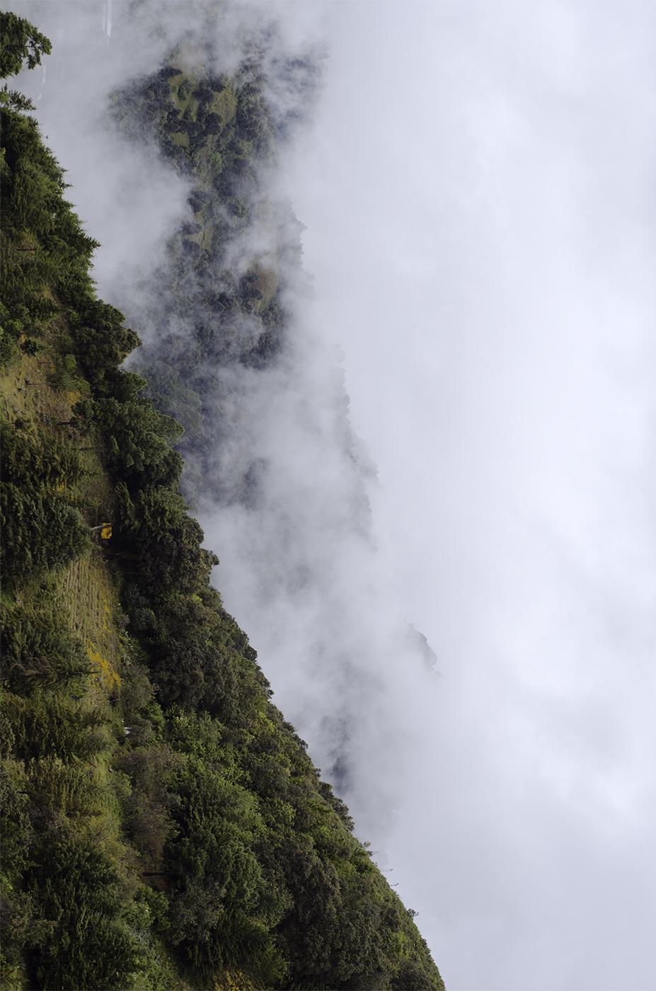 MontañaVerdeCintiaDuran2.jpg