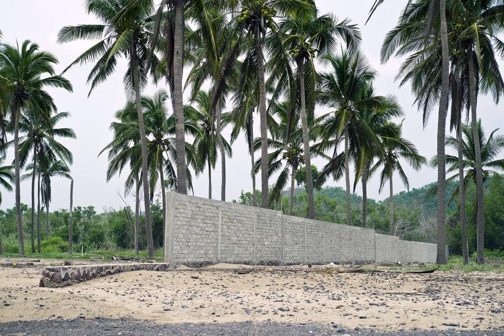 Oswaldo Ruiz, Muro tropical, 2016.jpg