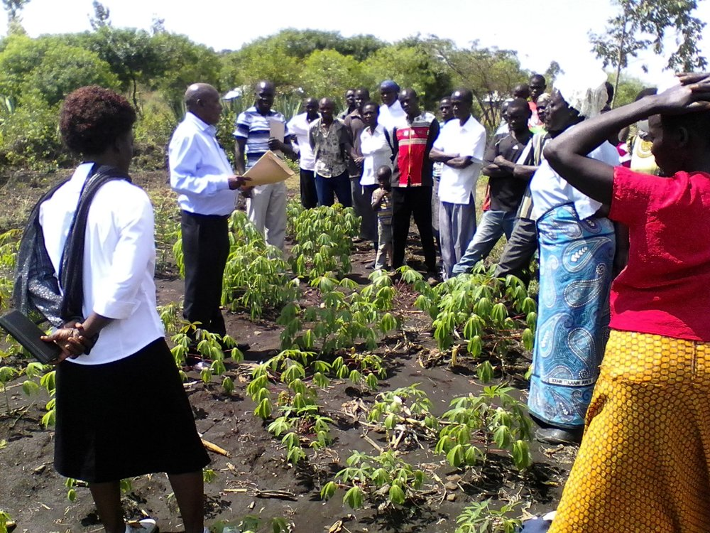 An Agriculture Officer explaining how to cultivate cassava.