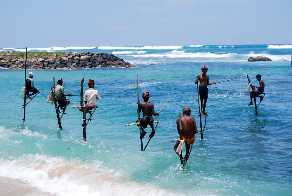 stilt fishermen Galle .jpg
