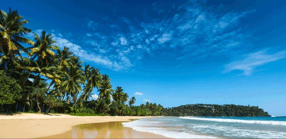 Gatis Traumurlaub Sri Lanka 10 Tage