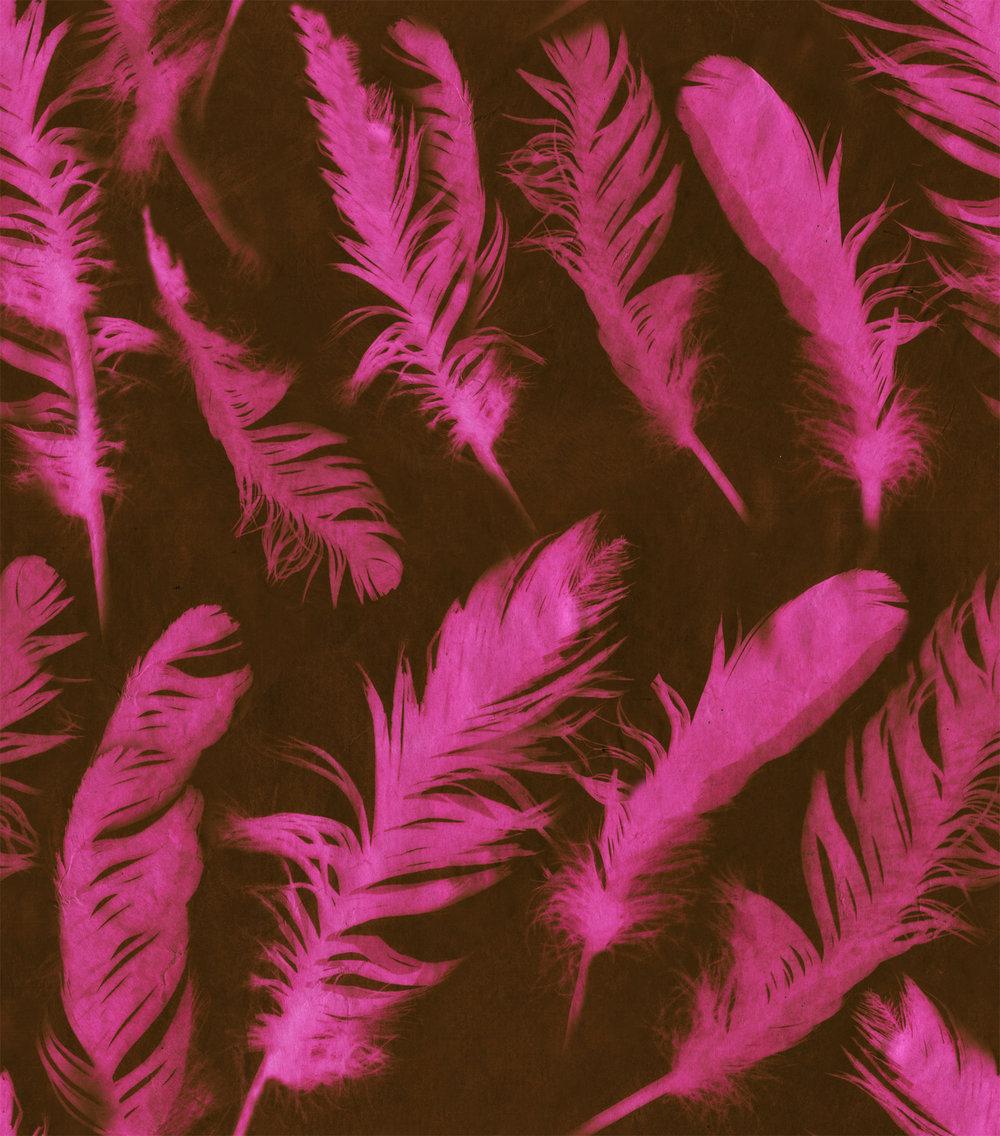 N2458 Feather Pink.jpg