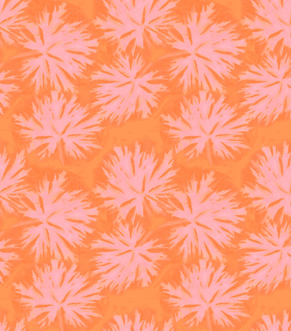 N2460 Geranium Orange.jpg