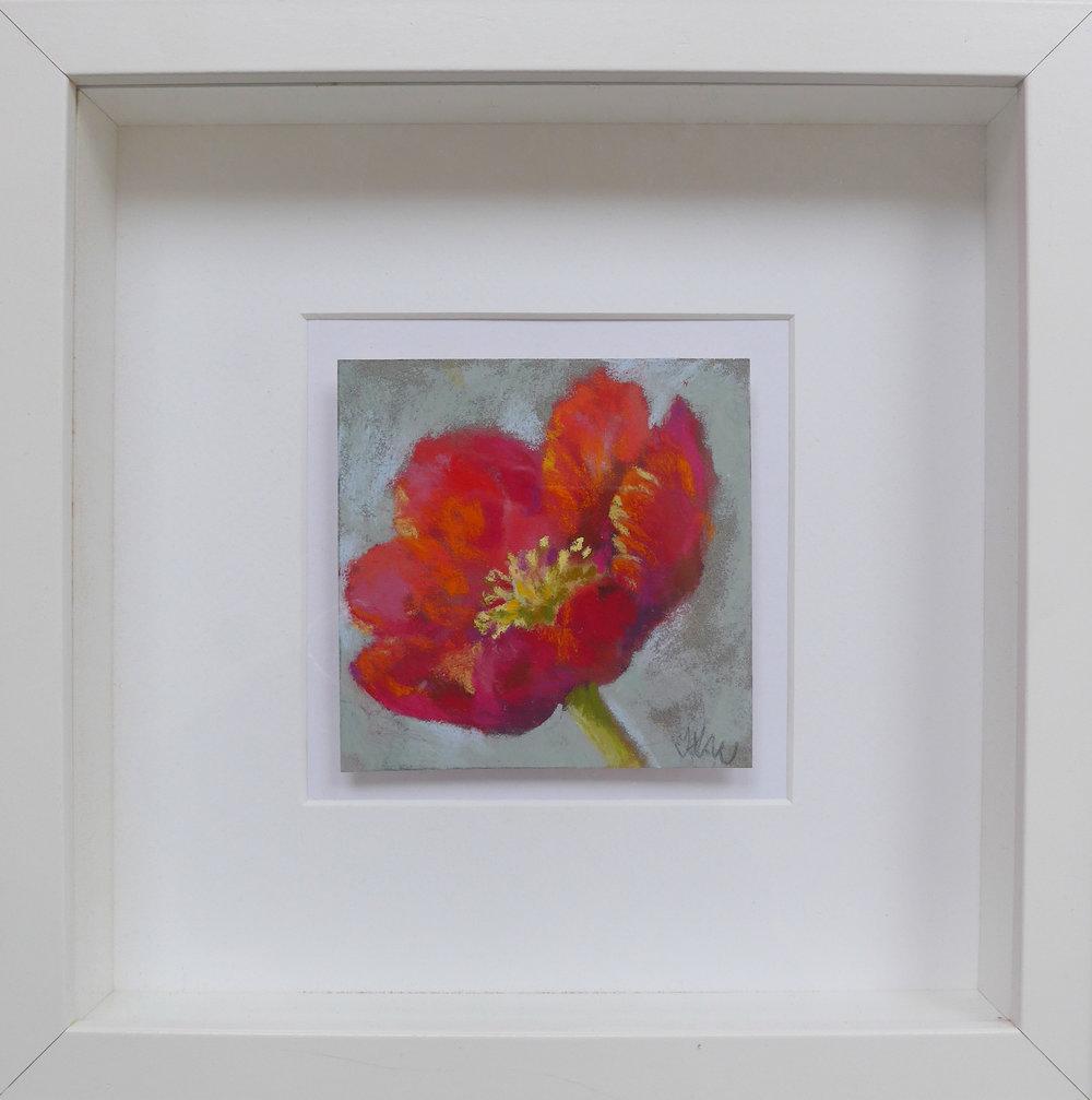MINI Camellia Framed.jpg