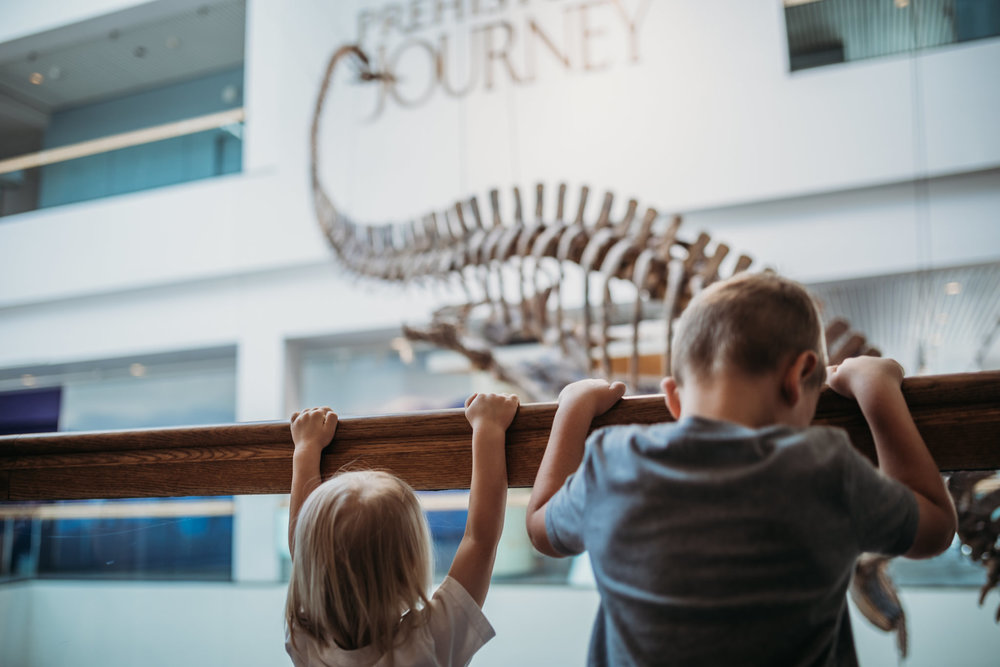 Denver Museum of Nature and Science | Rural Life Photography | Mike Wade