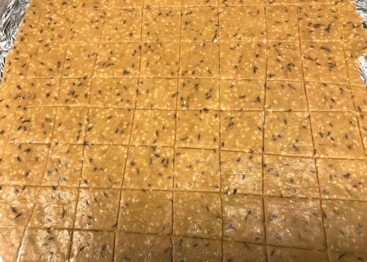 sesame crackers dough.JPG