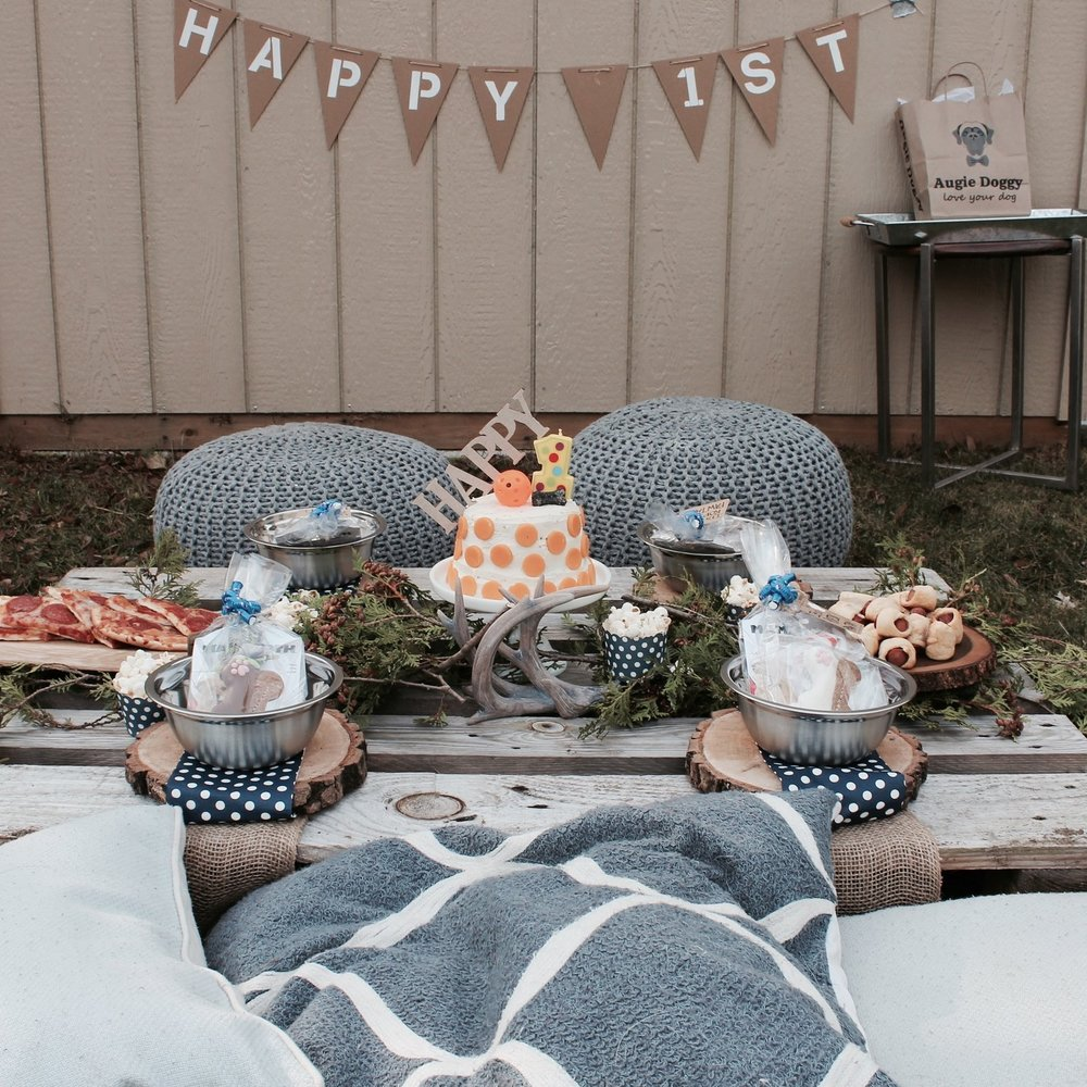 Backyard Setup - Paperback Events