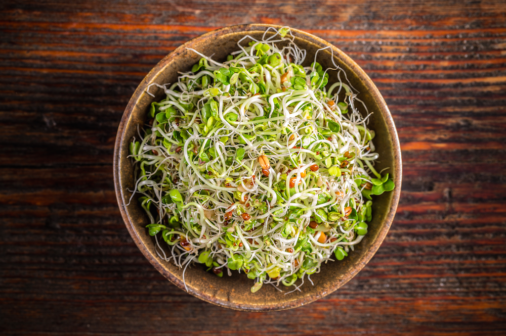 Vegan lifestyle - sprouting - a delicious and healthy addition to many vegan dishes