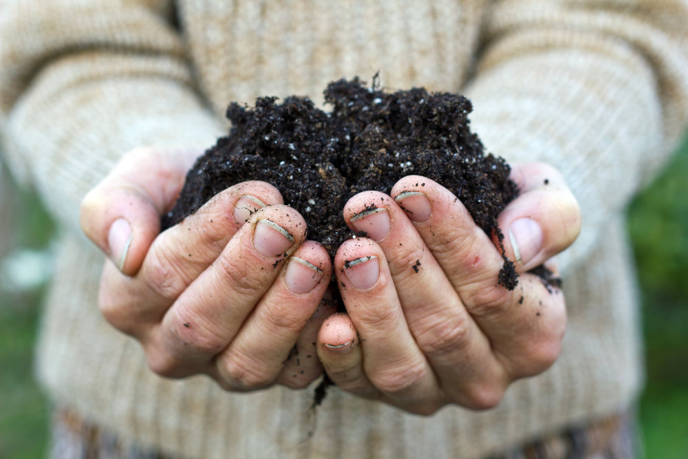 Vegan lifestyle - composting is another great way to help the environment reduce waste