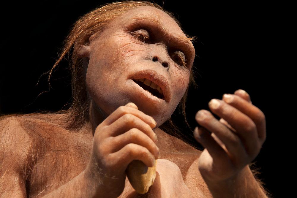 the caveman argument vegan veganism health nutrition plant based diet