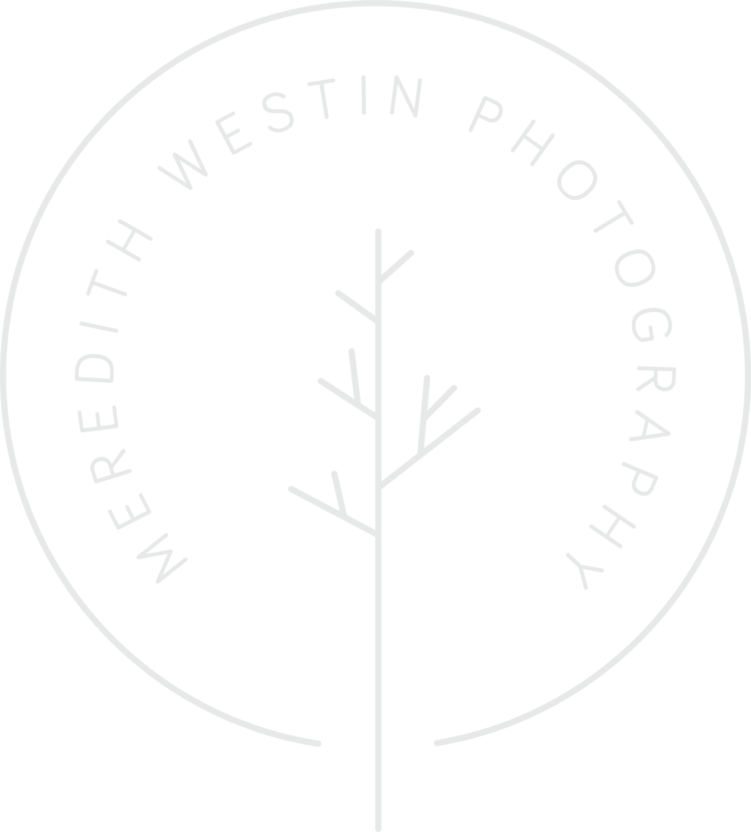 Meredith Westin Photography: Minneapolis and St. Paul Birth + Postpartum Photographer