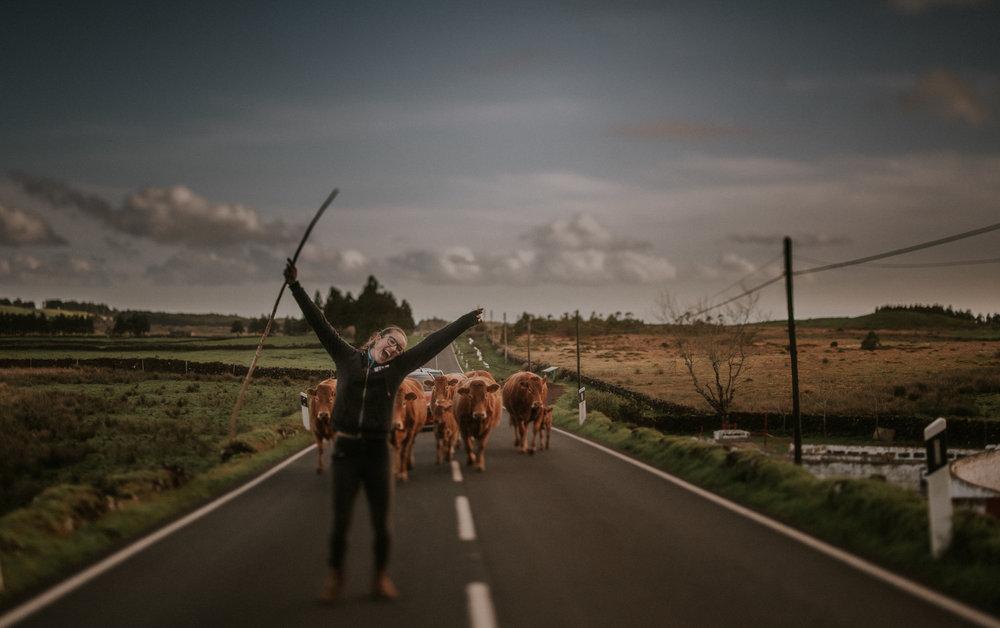 Azores 1.jpg