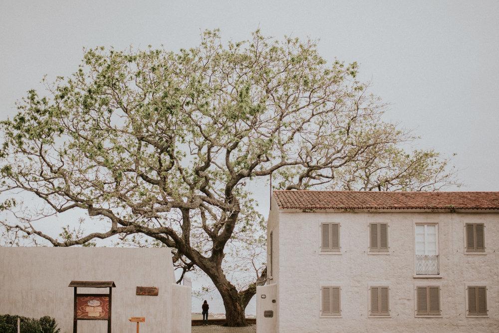 Azores 96.jpg