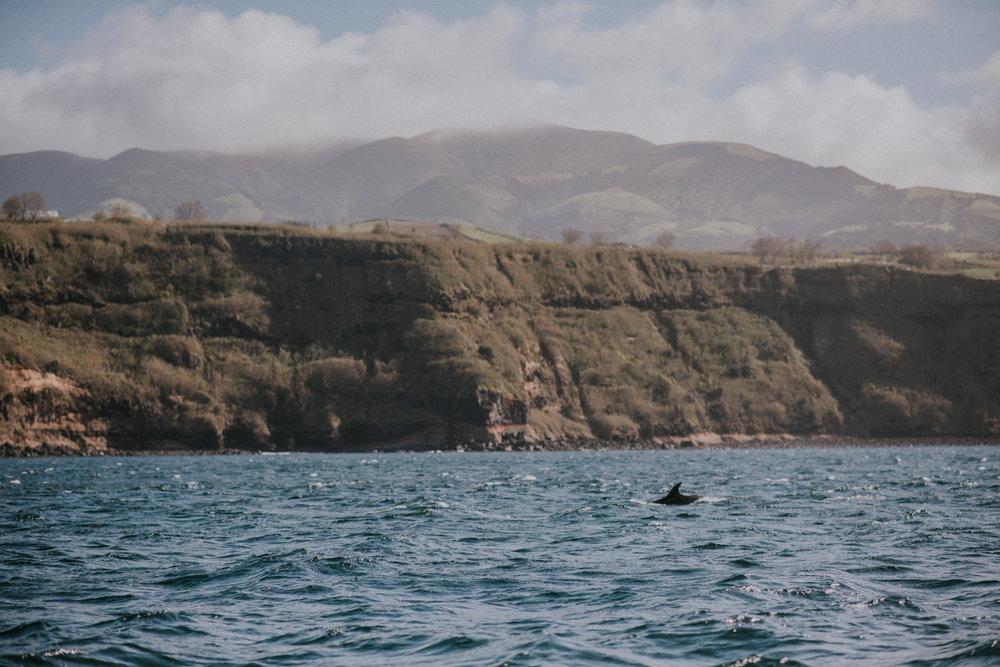 Azores 117.jpg