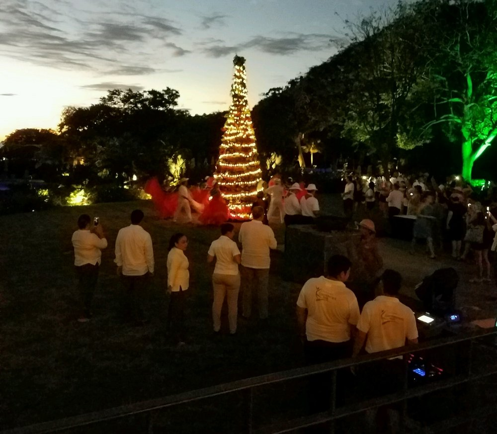 Festive activities (tree lighting ceremony)