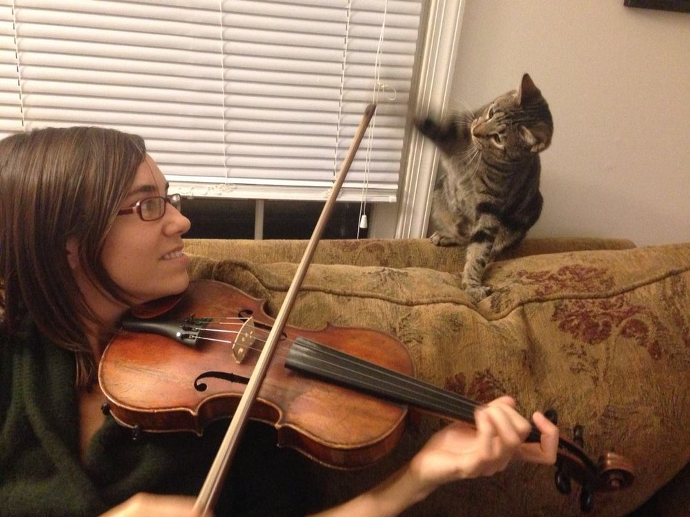 Roger wants to learn how to play the fiddle too!