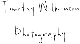 Timothy Wilkinson Photography
