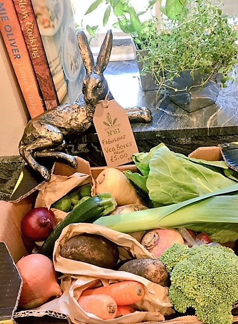 No61 Vegetable Box