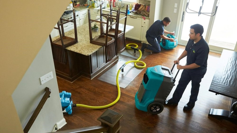 Carpet cleaning, wood floor cleaning, smoke, water, and fire home repair, home cleaning, and more. Friendly, prompt, professional service for Marion, Delaware, Crawford, Union, Morrow, and Wyandot Counties.